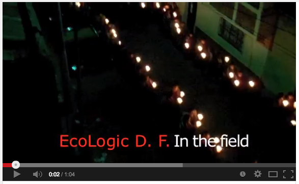 ecologic_video2_still