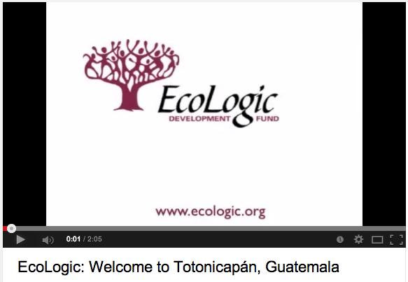 ecologic_video1_still